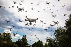 Douzaines d'essaim de bourdons dans le ciel sinistre photographie stock