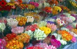 Douzaines de roses Images libres de droits