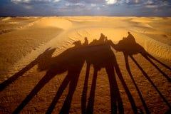 Douze, Tunísia Imagens de Stock Royalty Free