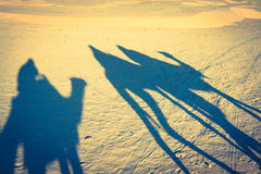 Douze,tunisia,camel and people in the sahara's desert Stock Images