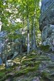 Dovbushrotsen, reusachtige stenen, rotsen, mos Stock Foto's