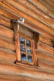 dove сидит окно стоковое изображение rf