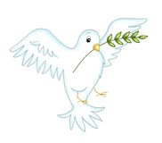 Dove Stock Images