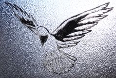 Dove. A photo of a dove painted on glass. The light on the top of the photo and the darkness on the bottom of the photo is symbolic of the light piercing the Stock Images