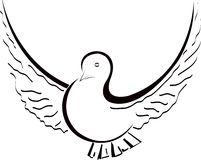 Dove. Artistic dove on a white background royalty free illustration