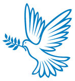 Dove. Beautiful bird, beautiful bird, a dove with outstretched wings vector illustration