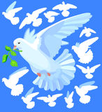 Dove stock illustration
