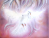Dove on abstract background. Painting and graphic design. Stock Images