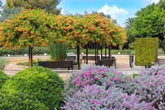 Dove Baron Edmond de Rothschild sepolto, Israele Immagini Stock Libere da Diritti