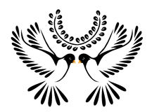 Dove or bird in flight Stock Images