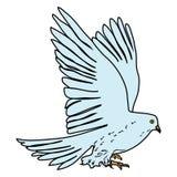 Dove Bird Poultry beast icon cartoon design illustration nature seaside. Dove Bird Poultry beast art cartoon design graphic icon illustration nature seaside Stock Images