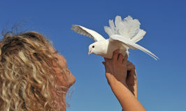 Dove and blond girl Royalty Free Stock Image