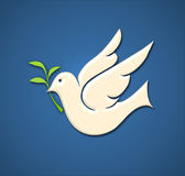 Dove with branch. Dove with a olive branch on a blue background (peace simbol stock illustration