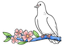 Dove Branch Royalty Free Stock Images