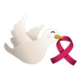 Dove with breast cancer symbol in the beak Stock Image