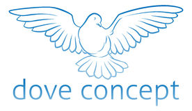 Dove Concept Royalty Free Stock Images