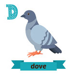 Dove. D letter. Cute children animal alphabet in vector. Funny c Stock Photos
