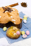 Dove with easter chocolates-colomba pasquale Stock Images