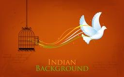 Dove enjoying Freedom from Cage. Illustration of dove flying out from cage showing freedom of India Stock Image
