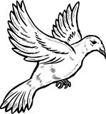 Dove in flight illustration Stock Photo