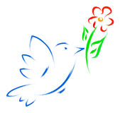 dove flower Stock Images