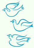 Dove flying. Royalty Free Stock Photos