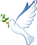 Dove, Flying, Peace, Olive, Branch Royalty Free Stock Photography