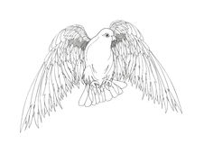 Dove in free flight. Bird with wings down. Isolated vector Royalty Free Stock Photography