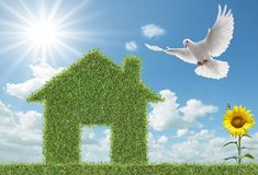 Dove and green grass house Royalty Free Stock Photography