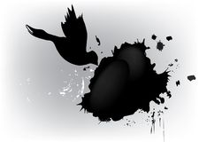 Dove and grunge blot Royalty Free Stock Photo