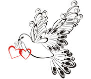 Dove with heart shaped Royalty Free Stock Image