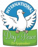 Dove Holding a Greeting Sign for International Day of Peace, Vector Illustration Stock Photography