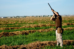 Dove Hunter takes aim Stock Image