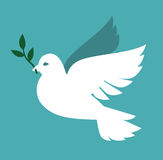 Dove icon Royalty Free Stock Image