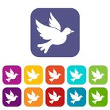 Dove icons set Royalty Free Stock Photos
