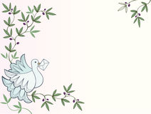 Dove with letter sitting on an olive tree background Stock Image
