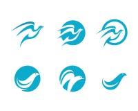 Dove logo Template Vector Stock Photos