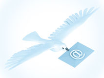 Dove Mail Royalty Free Stock Images