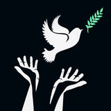Dove with olive branch stock illustration