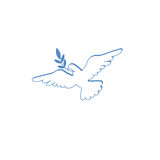 Dove with olive branch. White dove with olive branch Stock Photography