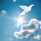 Dove over sun. Vector illustration with paper bird on paper sky with sun and clouds, low poly Stock Photos