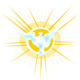 Dove of peace. The symbol of the dove has always been synonymous with brotherhood and peace, is the stylized image a dove behind the divine light Vector Illustration