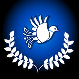 Dove of Peace Royalty Free Stock Photos