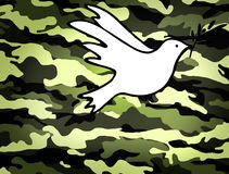 Dove of Peace, peaceful solutions of compromise symbol. On military background Royalty Free Stock Photo