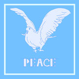 Dove of Peace Vector Illustration. Bird Isolated On Light Blue  Background. Royalty Free Stock Image