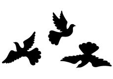 Dove silhouettes set Royalty Free Stock Image