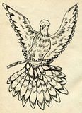 Dove Sketch Royalty Free Stock Photos