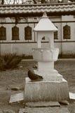 Dove and stone lantern Stock Image
