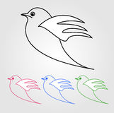 Dove- the symbol of peace Royalty Free Stock Photo
