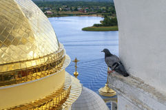 Dove under the arch of the Nilo-Stolobensky monastery. In Ostashkov, Russia Stock Photo
